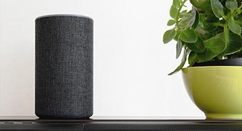 Smart Home Voice Assistant Amazon Echo Alexa