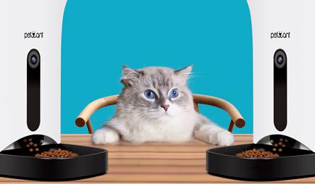 Smart Home Pet Feeder by Fetwant